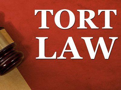 Tort Law Alya Al Zeera